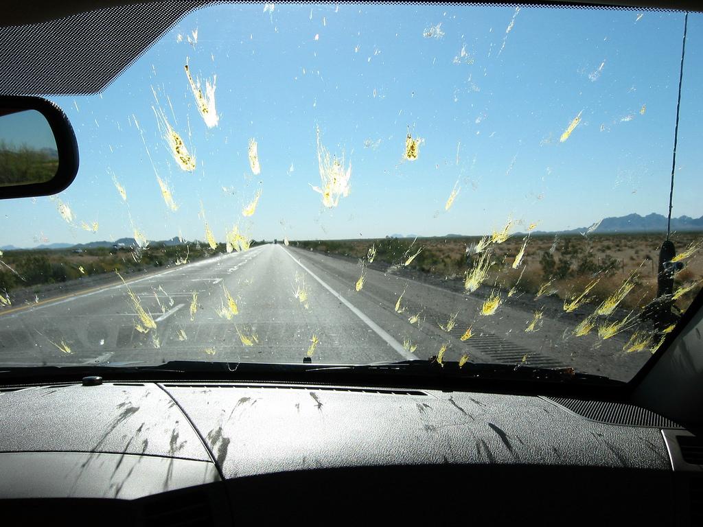 WD-40 remove insetos mortos do parabrisas